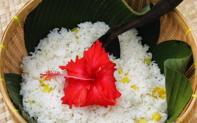 Goddess Dewi Sri and The Mantra of Rice
