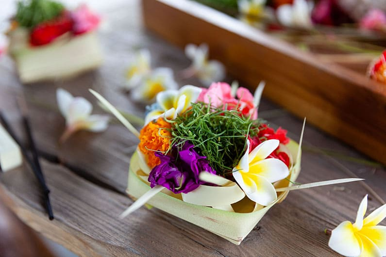 Lord Siwa's Flower in Bali - Canang (Waipa Studio)
